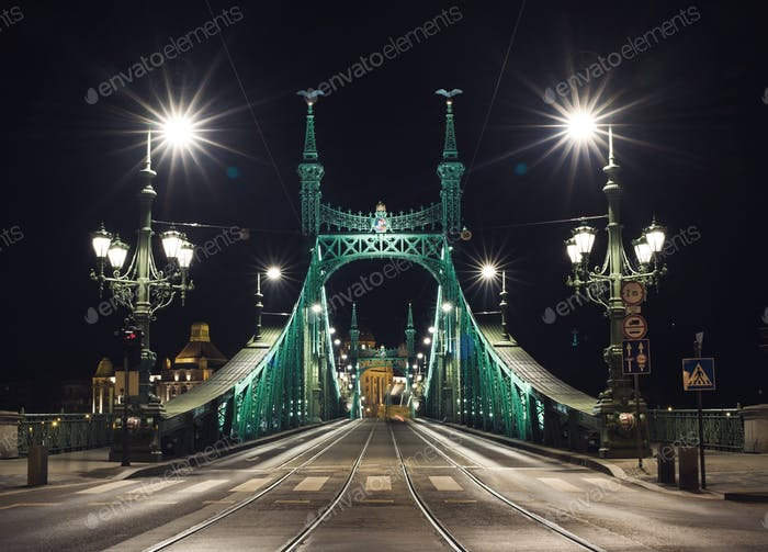 Night view of Liberty Bridge in Budapest, Hungary