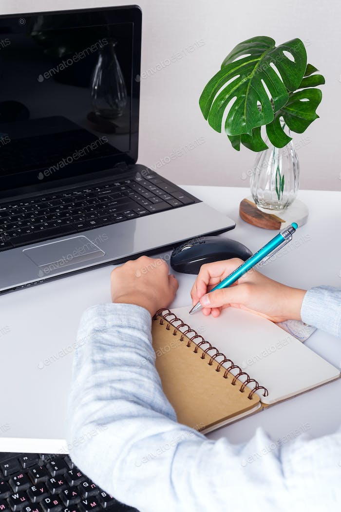 Workplace with laptop, boy puple's hands with pan above notebook and green plant on a white