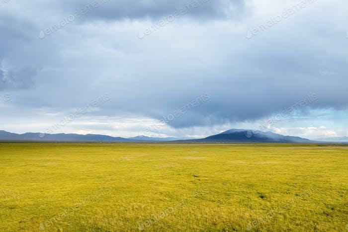 qinghai grassland scenery