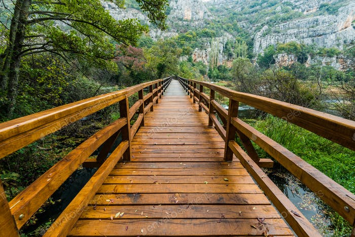 Wooden bridge in Krka National Park,Croatia