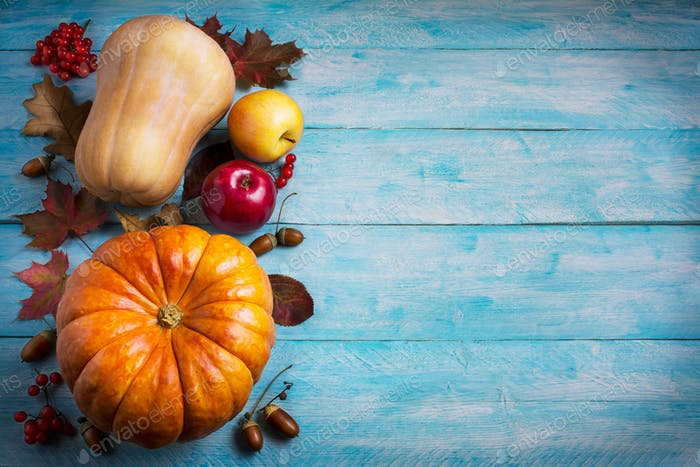 Thanksgiving  greeting with orange pumpkins and fall leaves on b