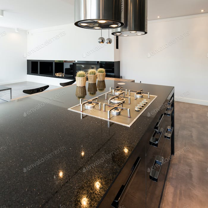 Open kitchen in luxurious style