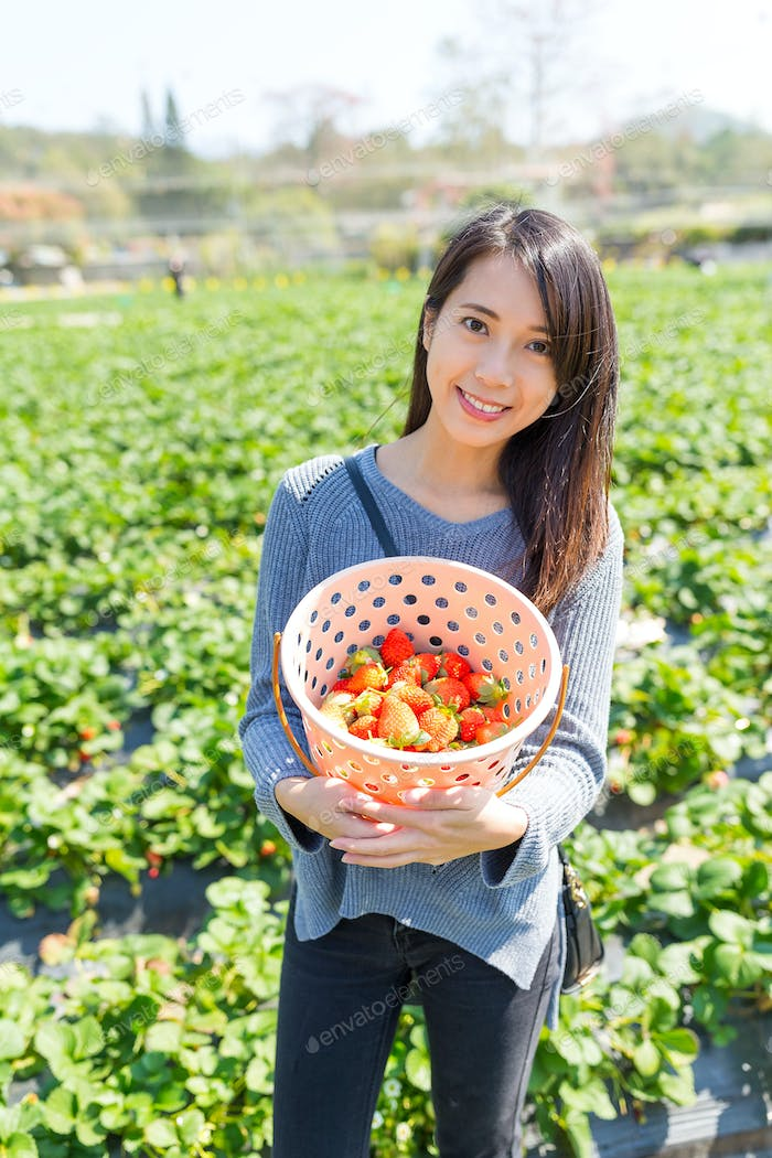Woman holding basket of strawberry after picking from field