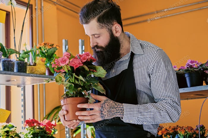The bearded stylish flower seller holds pink roses in a market s