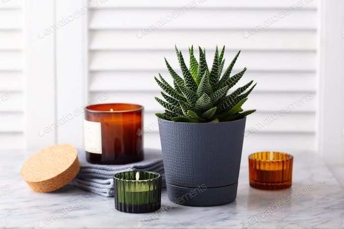 Natural Eco Home decor, succulent plant, candles, towels on marble table. White background.