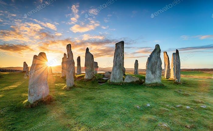 Callanish stones 018