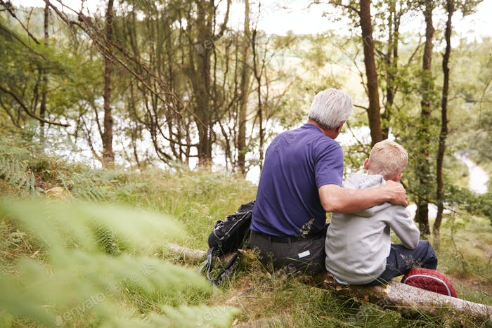 Grandfather and grandson on a hike sitting on a fallen tree in a forest, looking ahead, back view