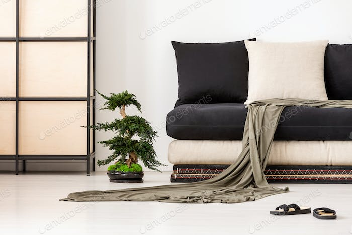 Blanket and pillows on black couch in asian living room interior