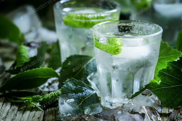 Birkeneisiger Wodka