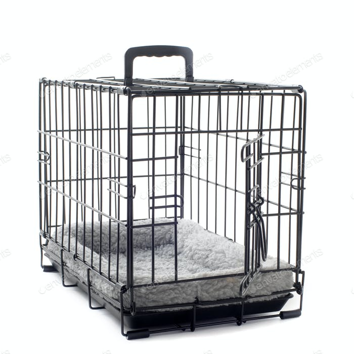 pet carrier with cushion