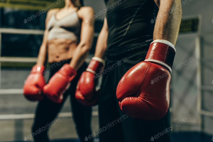 cropped shot of young boxers in boxing gloves standing on boxing ring