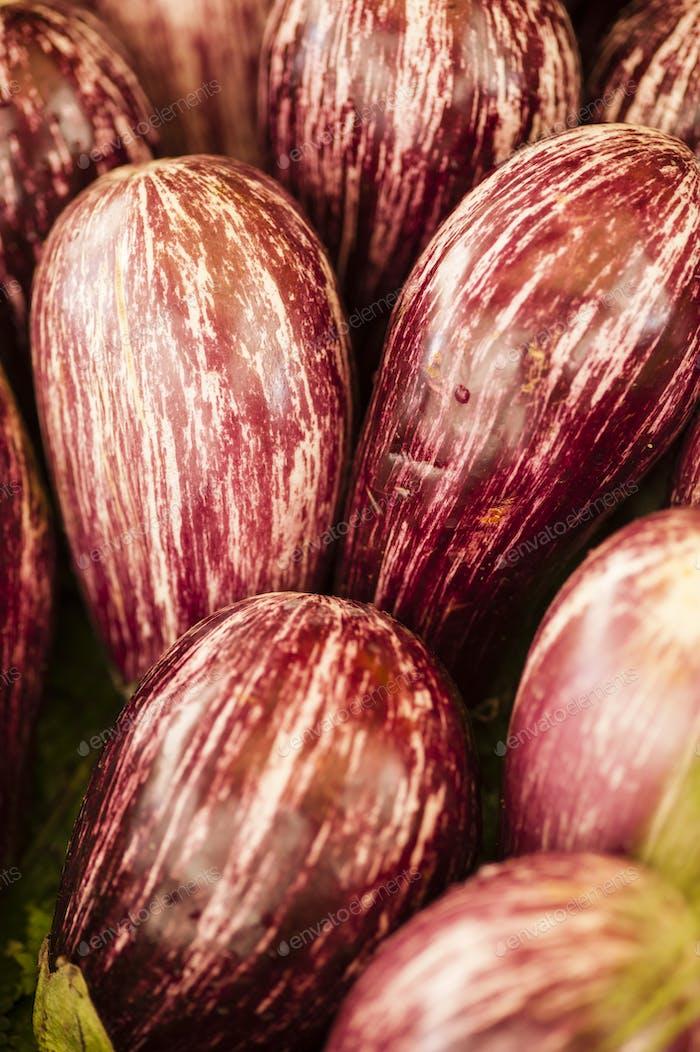 striped eggplants on display