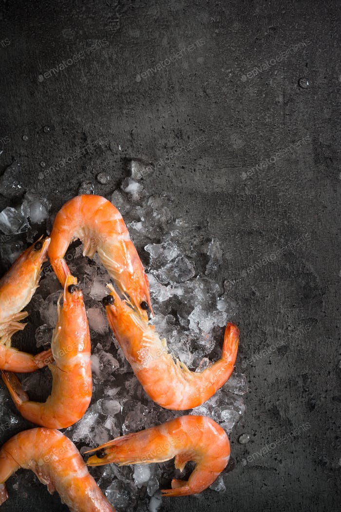 Fresh Prawns Shrimps in ice.