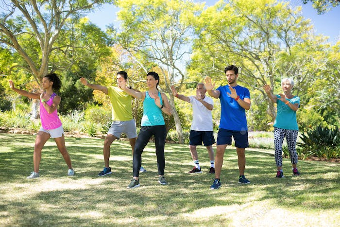 Group of people exercising in the park