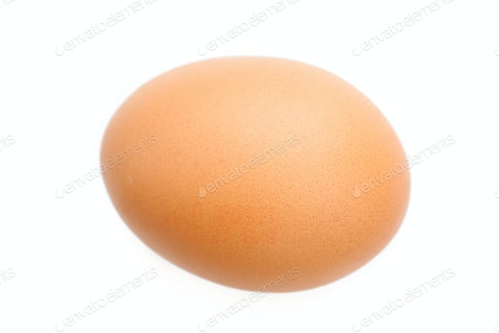 Egg against a white background