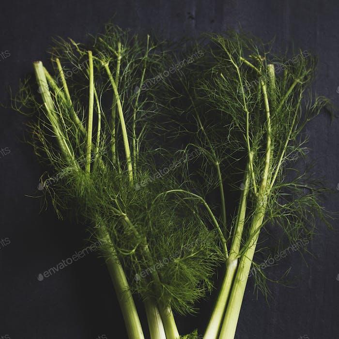 Aerial view of fresh funnel leaf vegetable on black background