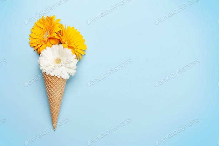 Colorful gerbera flowers in ice cream cone