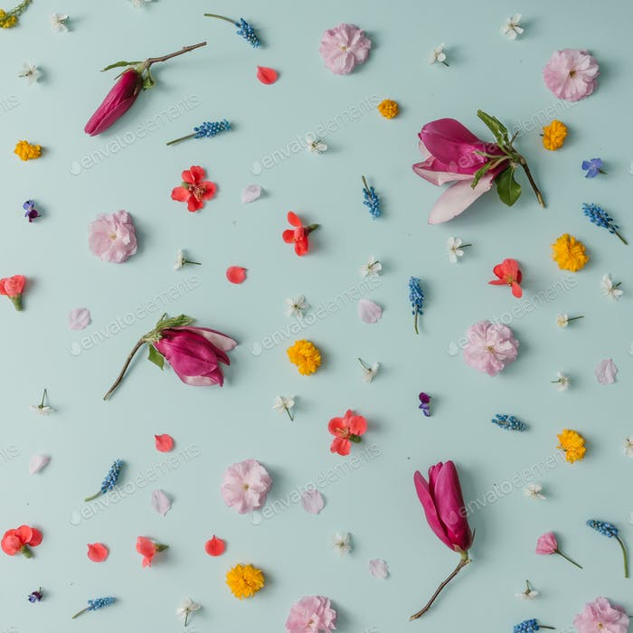Creative pattern made of colorful spring flowers. Minimal style. Flat lay.