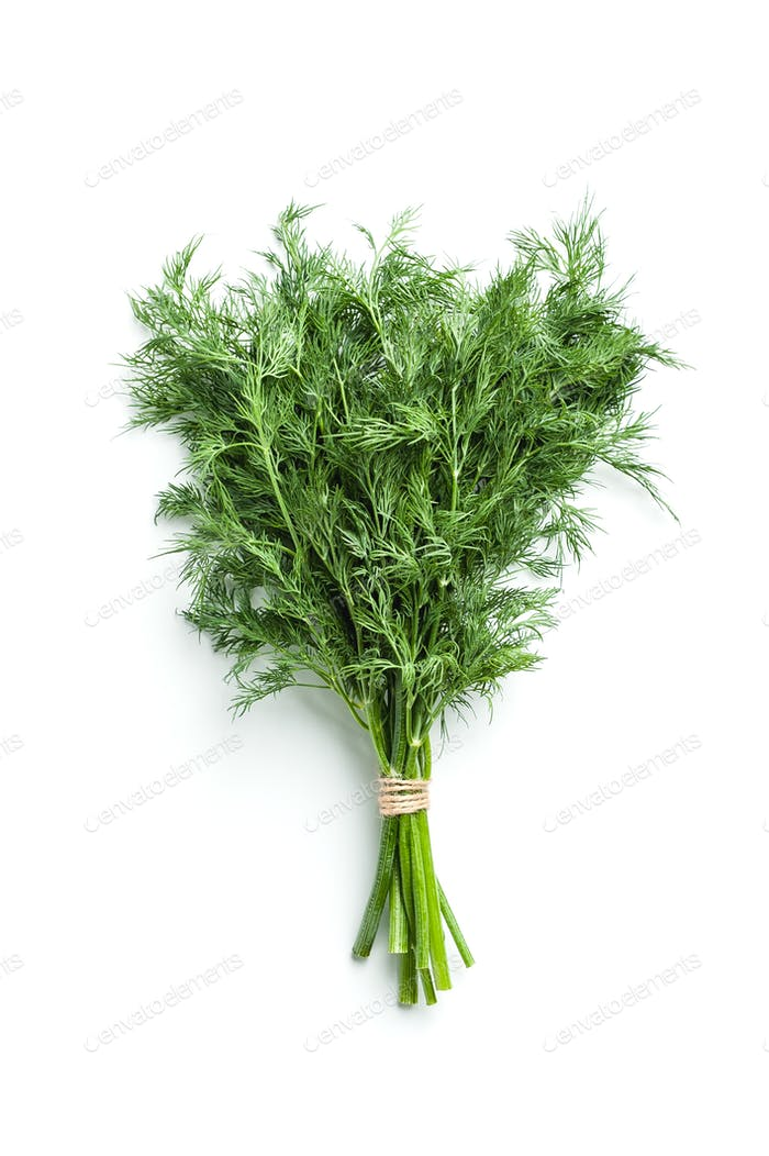 Fresh dill isolated on white background.