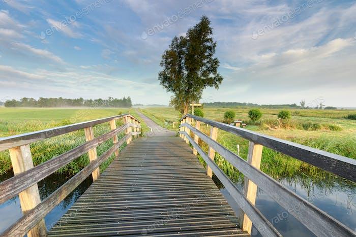 Puente a través del río en el campo de la mañana