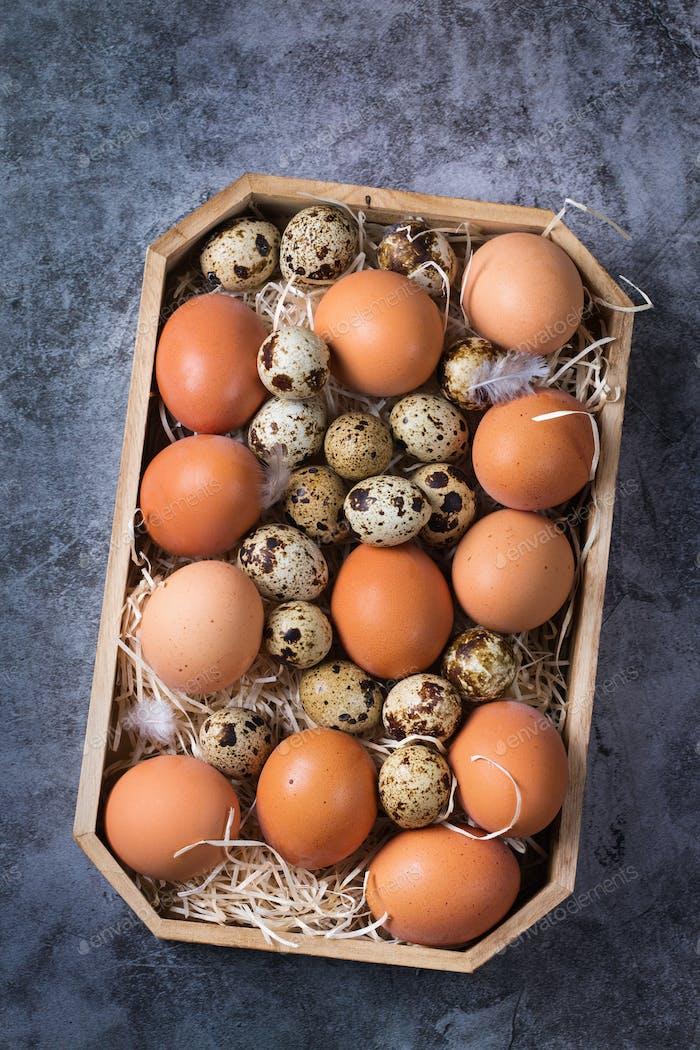 Assortment of organic fresh chicken and quail eggs