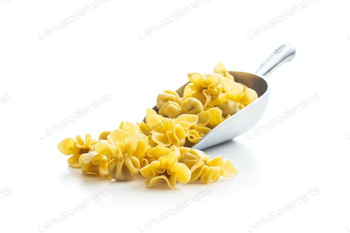 Italian stuffed pasta. Sacchettini pasta.