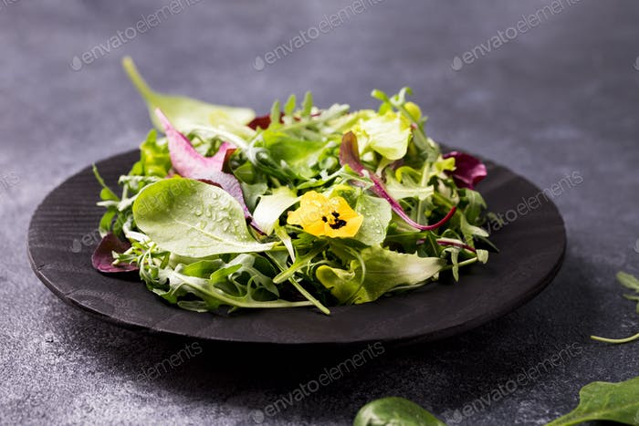 Salad from a fresh mix of leafy greens. Antiviral healthy food. Vitamins.