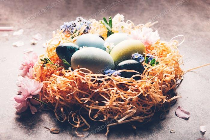 Hausgemachte natürlich gefärbte Eier.
