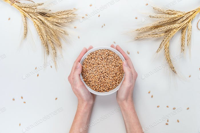Round bowl with rye grains in female hands