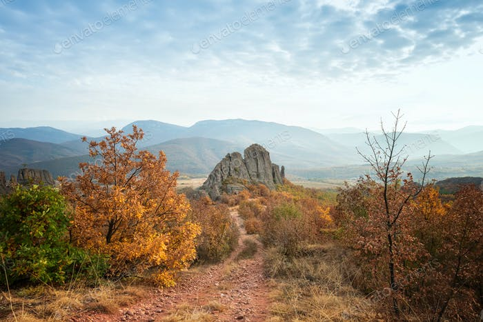 Lonely rock in an autumn field