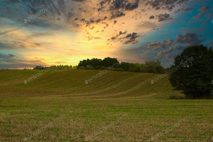 Summer sunrise over the meadows