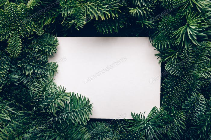 Frame from Xmas tree branches with mock up