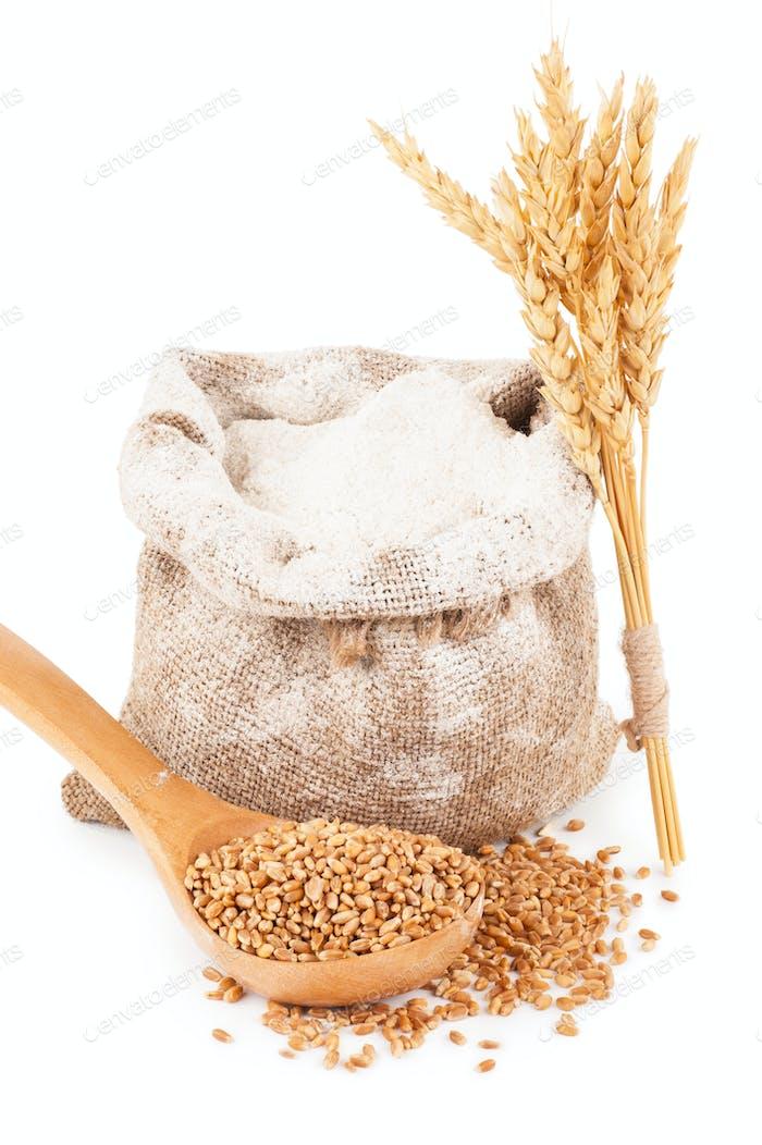 Flour in burlap bag with wheat grain