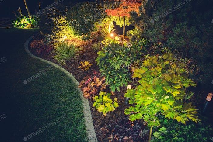 Illuminated Backyard Garden
