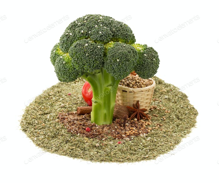 broccoli and spices on white