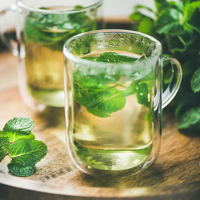 Hot herbal mint tea drink in glass mugs, square crop