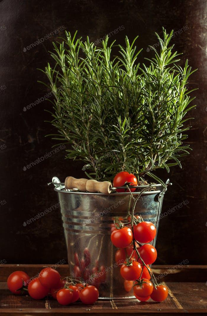 vegetables in metal bucket