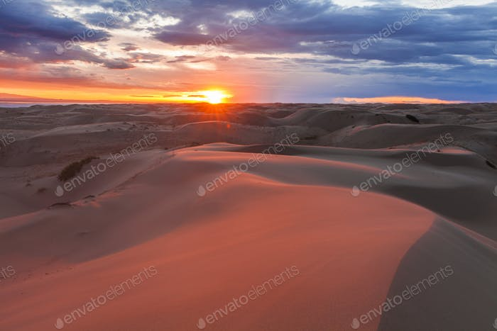 Amazing pink sunset in the Gobi Desert. Mongolia