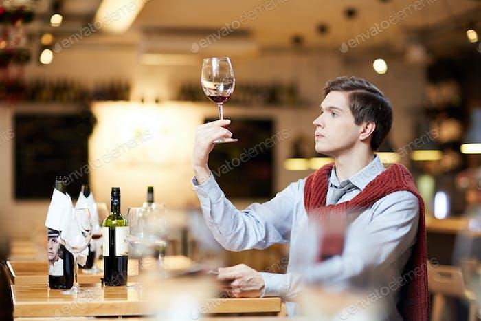 Verkostung von Wein