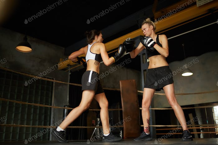 Two Female Boxers Fighting