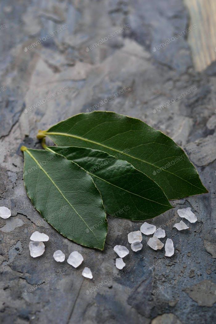 Fresh bay leaves and salt