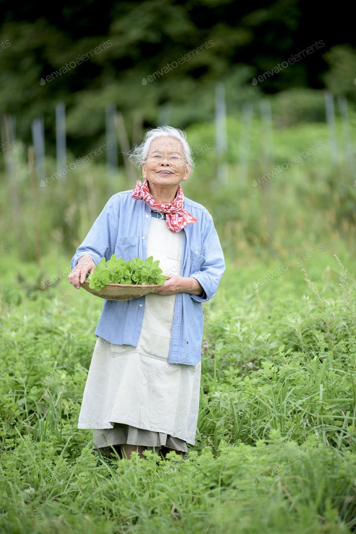 Elderly woman with grey hair standing in a garden, holding basket with fresh vegetables, smiling at