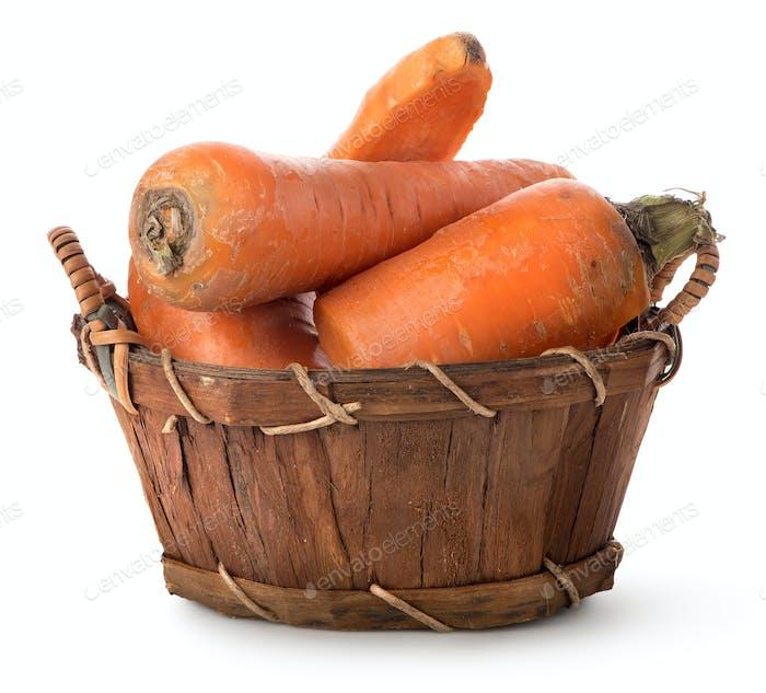 Delicious carrot