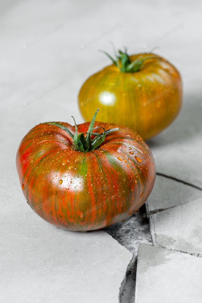 Hereditary tomatoes. Two tomatoes of different colors on a gray