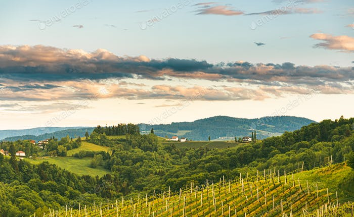 Gamlitz town in Austria Vineyards in Sulztal area south Styria, famous wine country