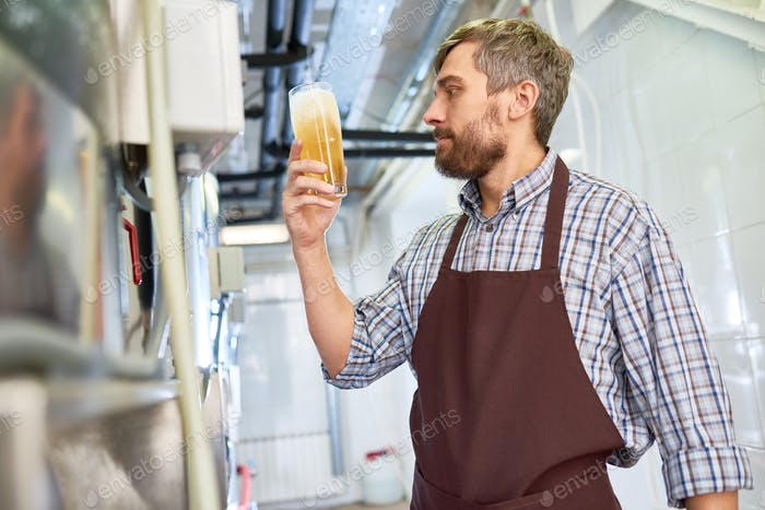 Quality control expert working at brewery plant
