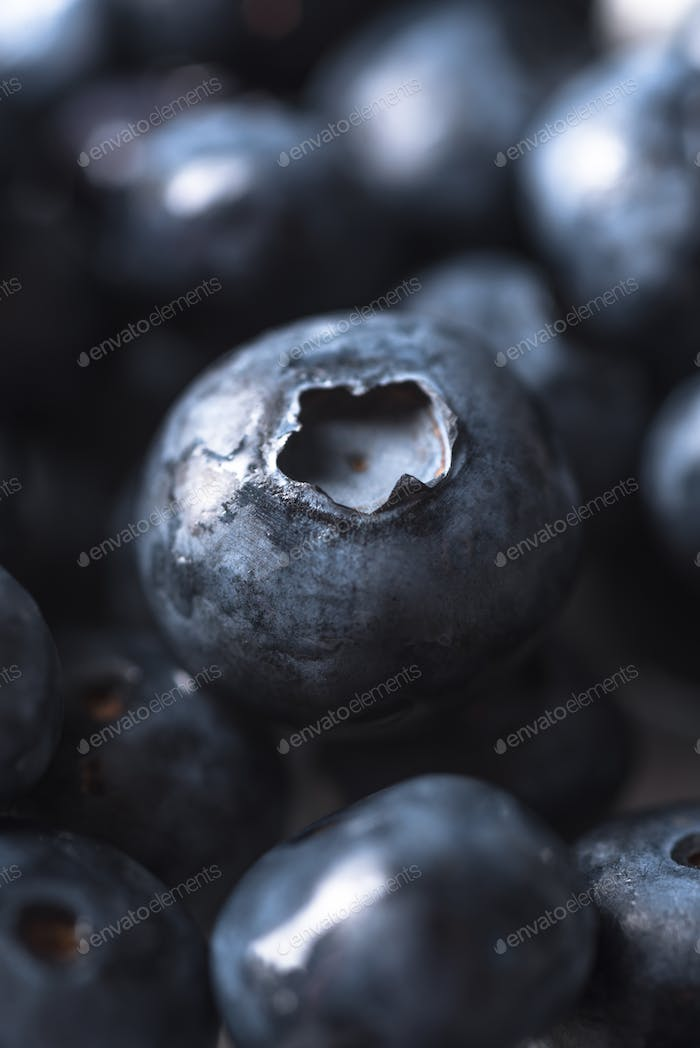 Fresh ripe perfect blueberries. Macro.