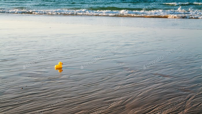 toy duckling on beach during evening ebb