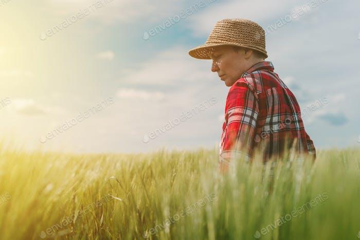 Protección de los cultivos y control del desarrollo del crecimiento en la agricultura