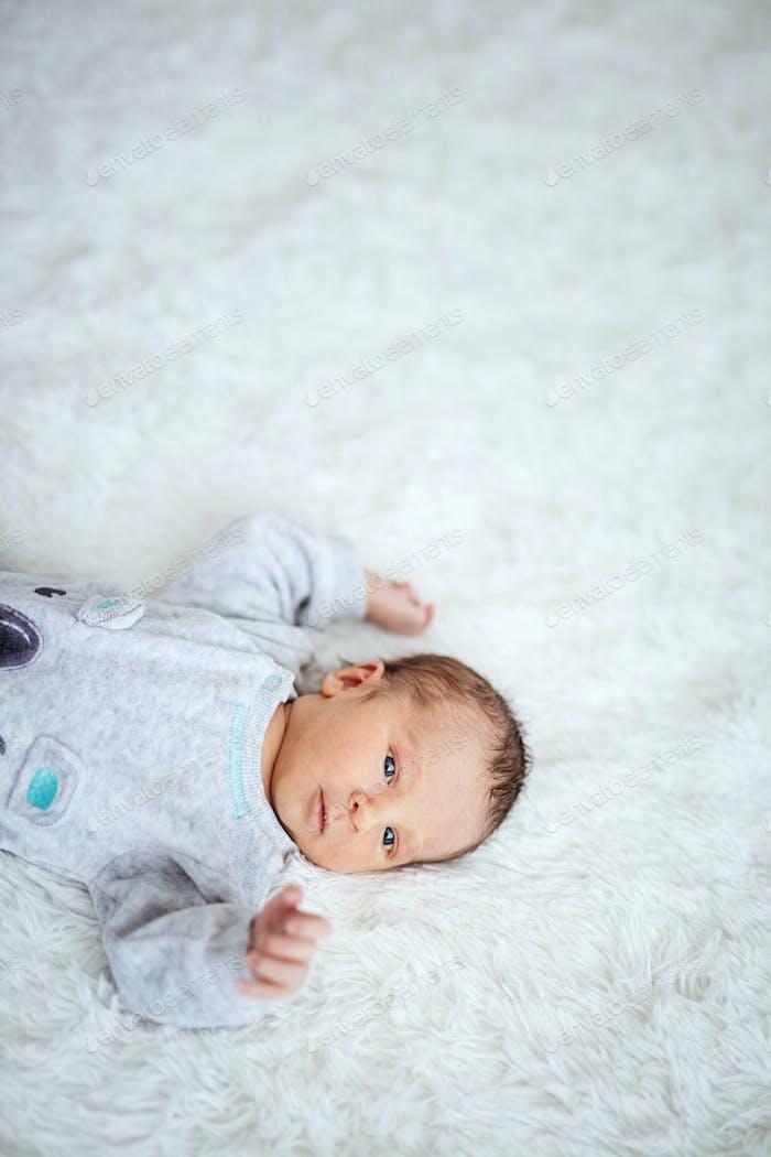 Newborn baby boy lying down on bed
